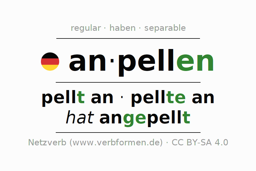 Entire conjugation of the German verb anpellen. All tenses are clearly represented in a table.