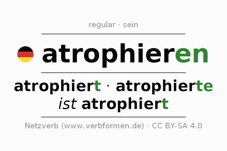 Was ist Atrophie?