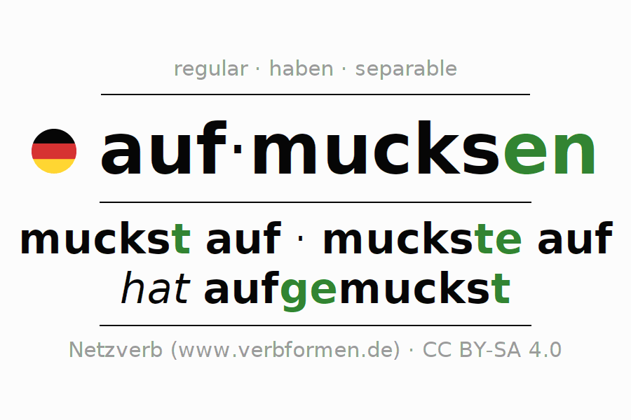 Entire conjugation of the German verb aufmucksen. All tenses are clearly represented in a table.