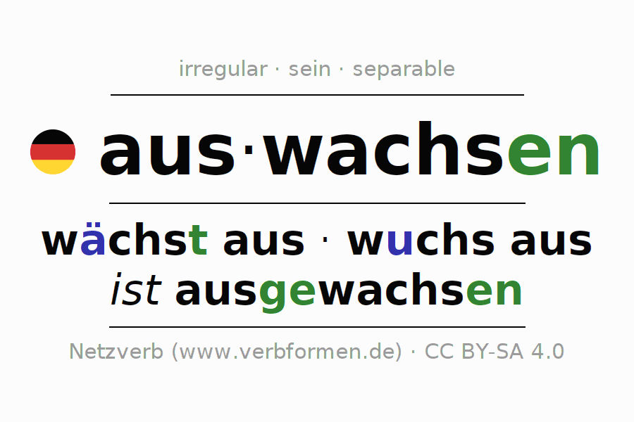 Entire conjugation of the German verb auswachsen (ist). All tenses and modes are clearly represented in a table.