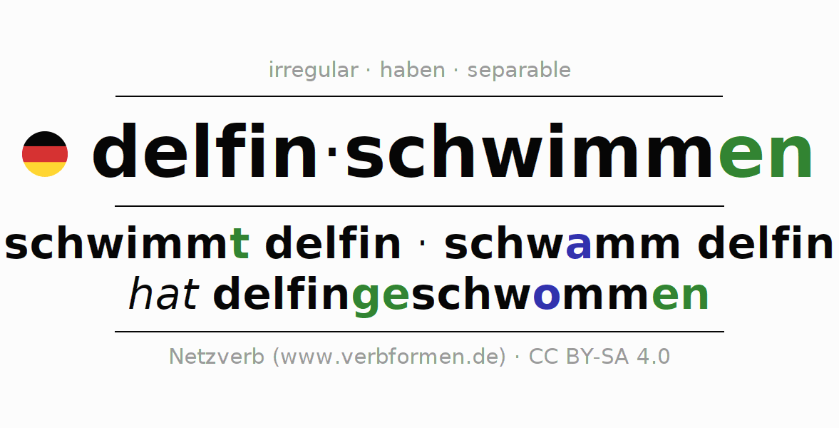 Entire conjugation of the German verb delfinschwimmen (hat). All tenses are clearly represented in a table.