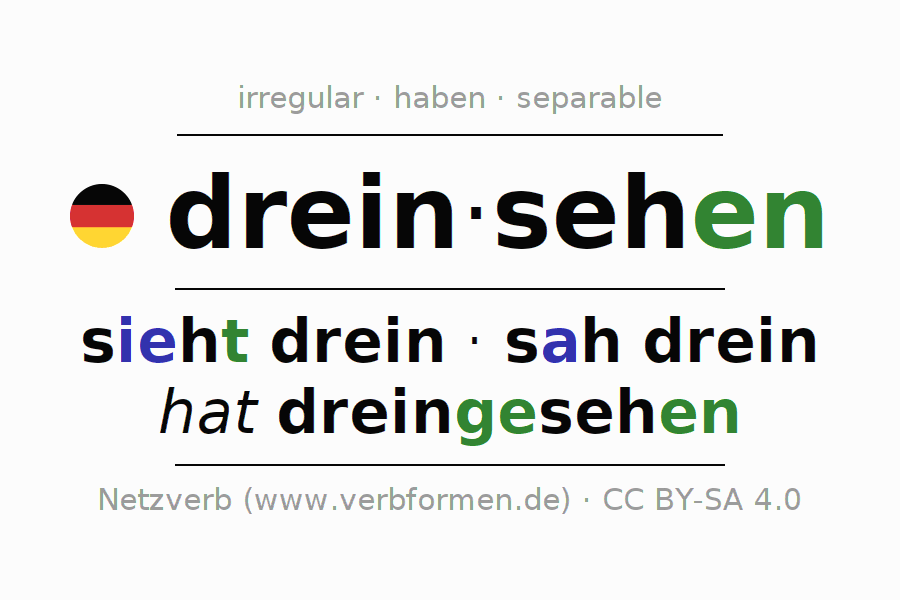 Entire conjugation of the German verb dreinsehen. All tenses are clearly represented in a table.