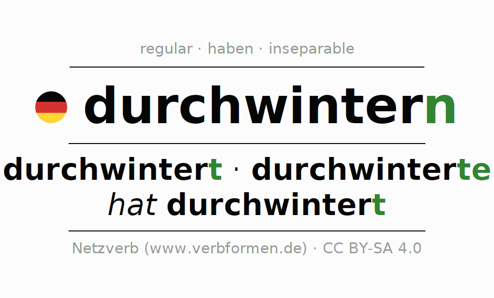 Entire conjugation of the German verb durchwintern. All tenses are clearly represented in a table.
