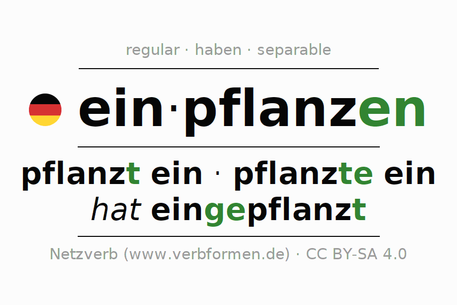 Entire conjugation of the German verb einpflanzen. All tenses and modes are clearly represented in a table.