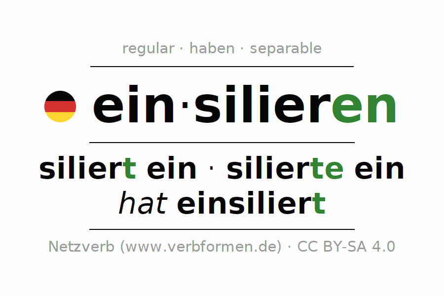 Conjugation of German verb einsilieren