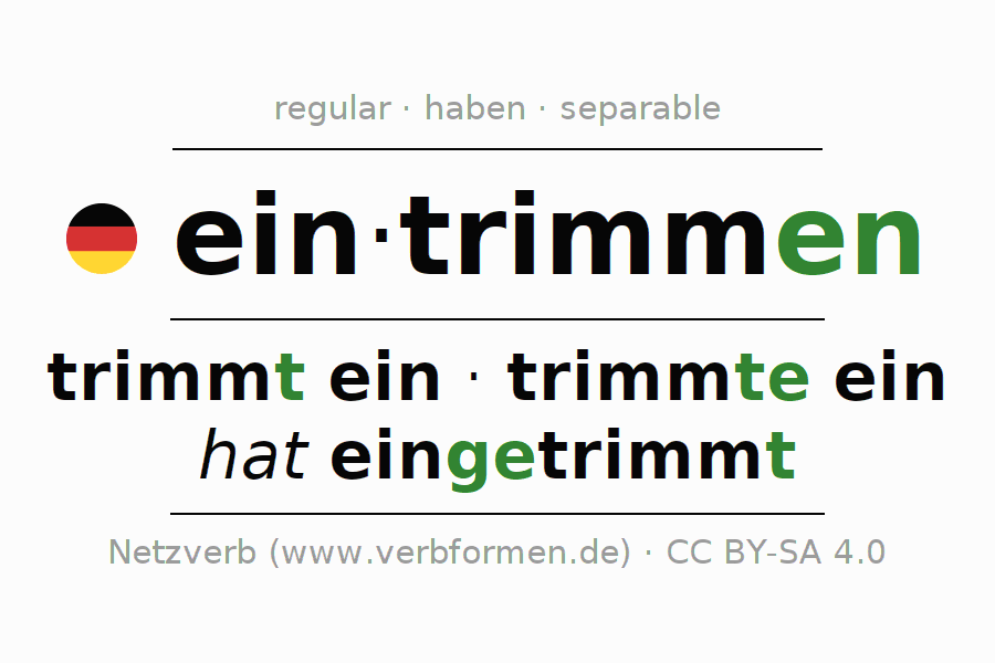Entire conjugation of the German verb eintrimmen. All tenses are clearly represented in a table.