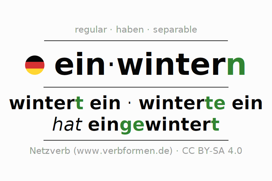 Conjugation of verb einwintern