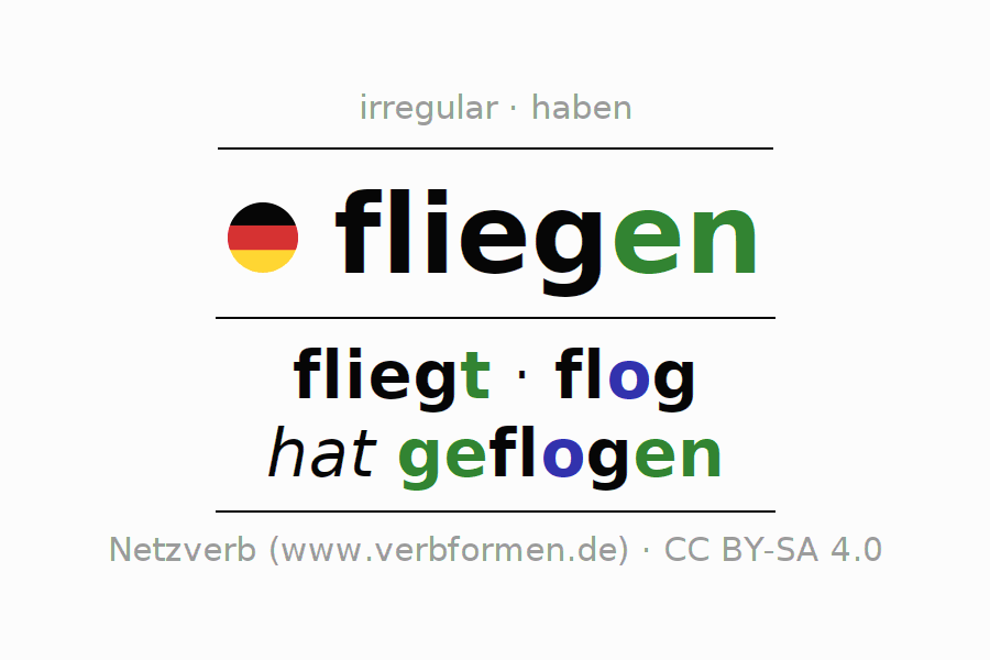 Conjugation of German verb fliegen (hat)