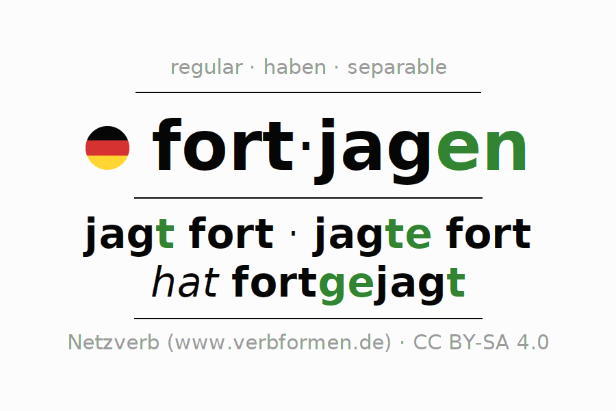Conjugation of verb fortjagen (hat)