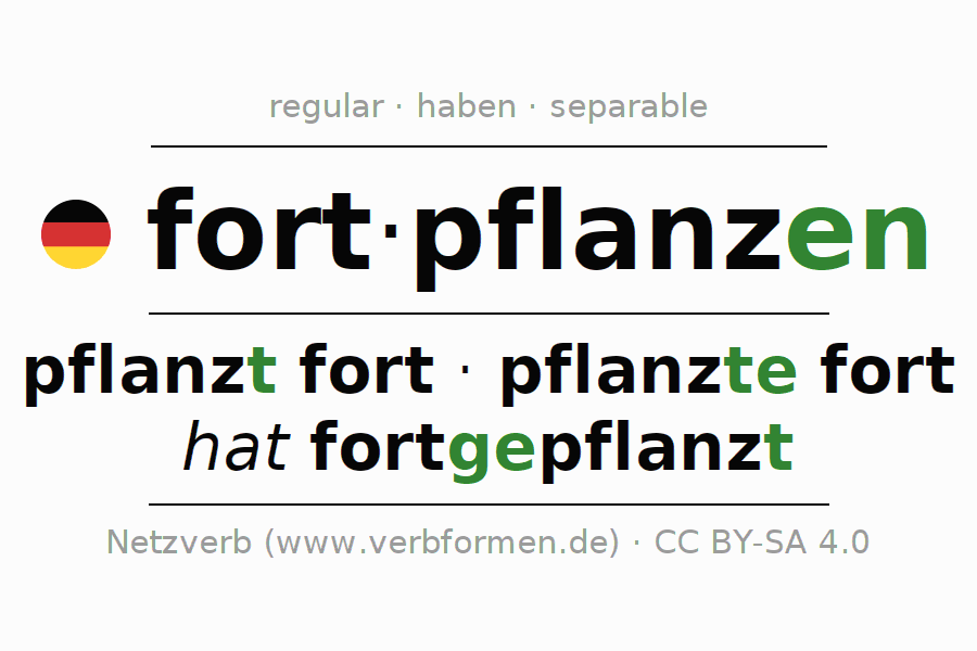 Entire conjugation of the German verb fortpflanzen. All tenses and modes are clearly represented in a table.
