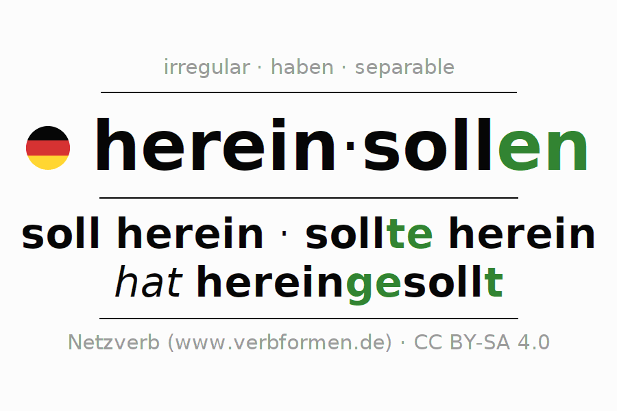Conjugation of German verb hereinsollen