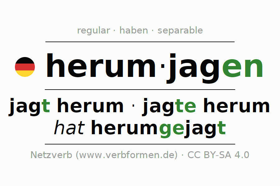 Conjugation of German verb herumjagen (hat)