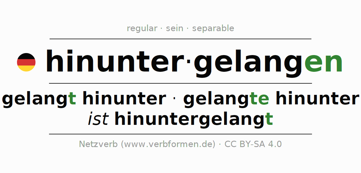 Conjugation of German verb hinuntergelangen