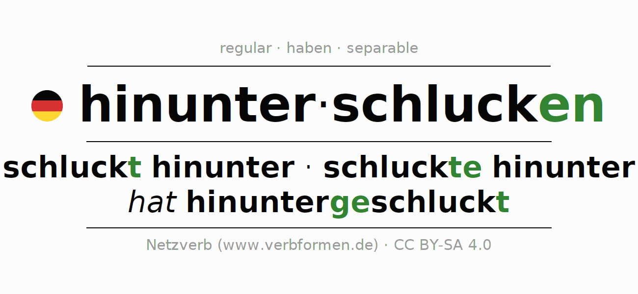 Conjugation of German verb hinunterschlucken