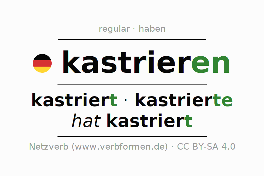 Entire conjugation of the German verb kastrieren. All tenses are clearly represented in a table.