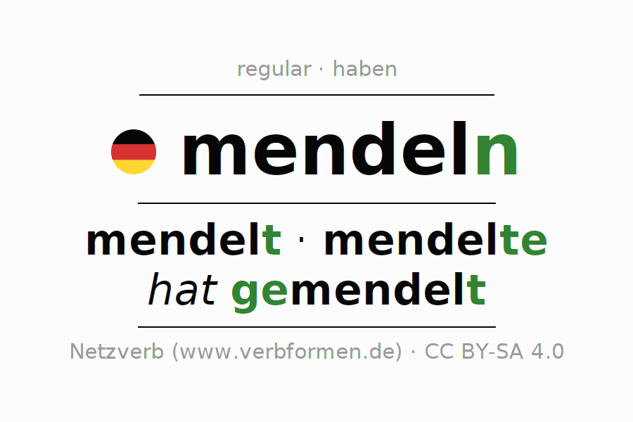 Entire conjugation of the German verb mendeln. All tenses are clearly represented in a table.