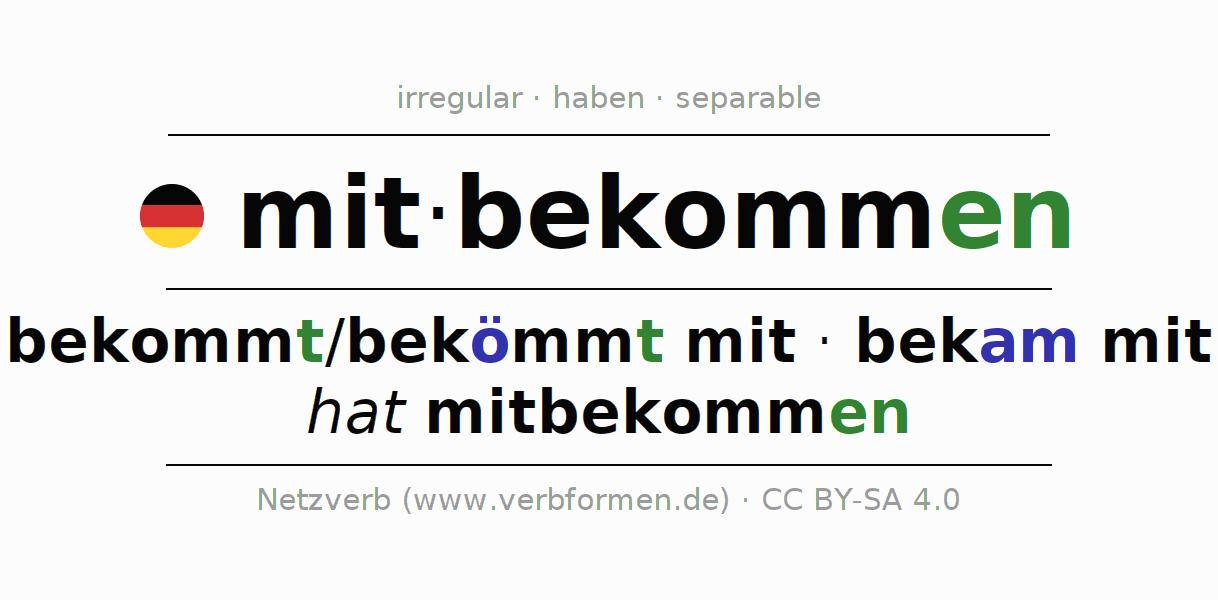 Entire conjugation of the German verb mitbekommen. All tenses are clearly represented in a table.