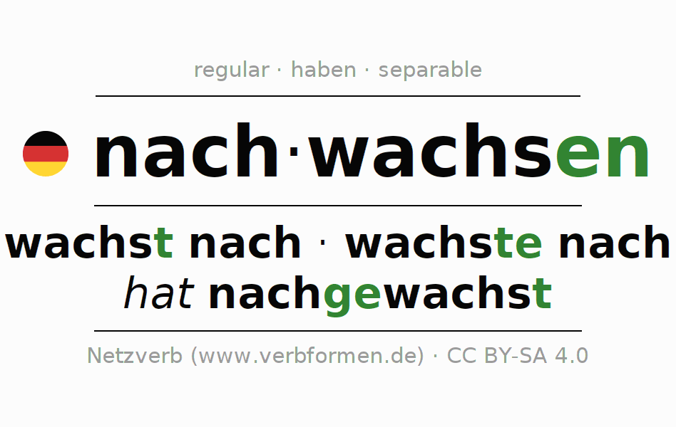 Entire conjugation of the German verb nachwachsen (regelm) (hat). All tenses are clearly represented in a table.