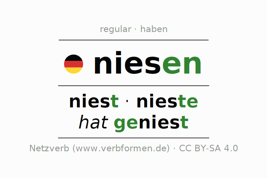 Entire conjugation of the German verb niesen. All tenses are clearly represented in a table.