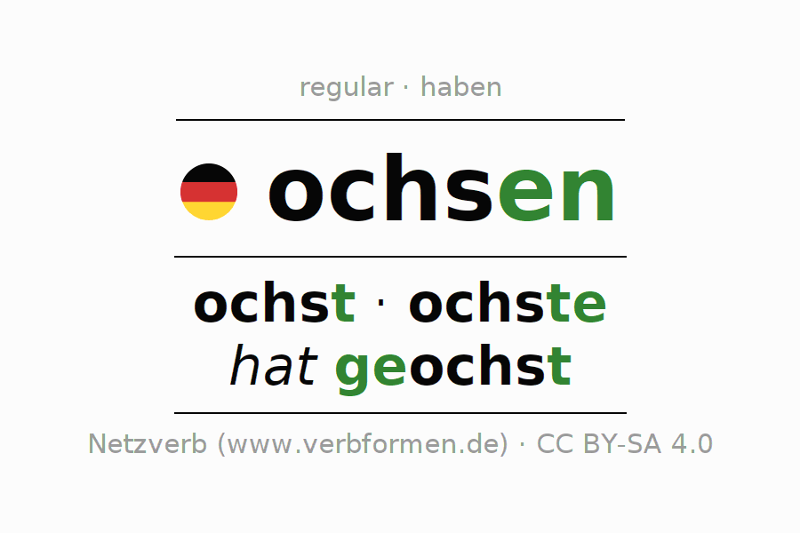 Entire conjugation of the German verb ochsen. All tenses and modes are clearly represented in a table.