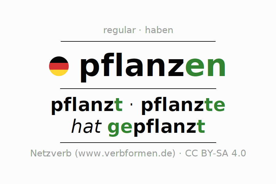 Entire conjugation of the German verb sich pflanzen. All tenses are clearly represented in a table.