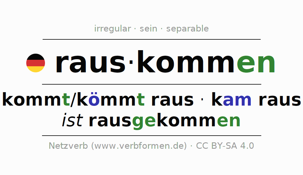 Entire conjugation of the German verb rauskommen. All tenses are clearly represented in a table.