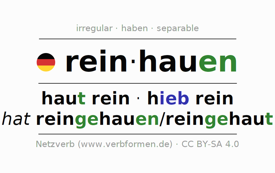 Entire conjugation of the German verb reinhauen (regelm). All tenses are clearly represented in a table.