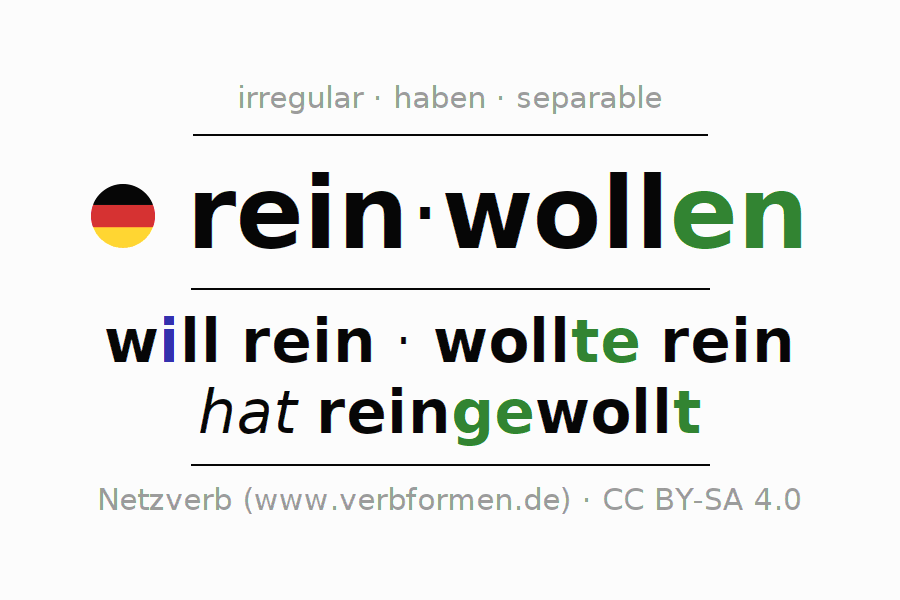 Entire conjugation of the German verb reinwollen. All tenses are clearly represented in a table.