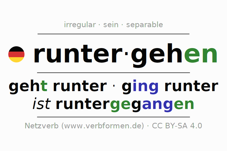 Conjugation of German verb runtergehen