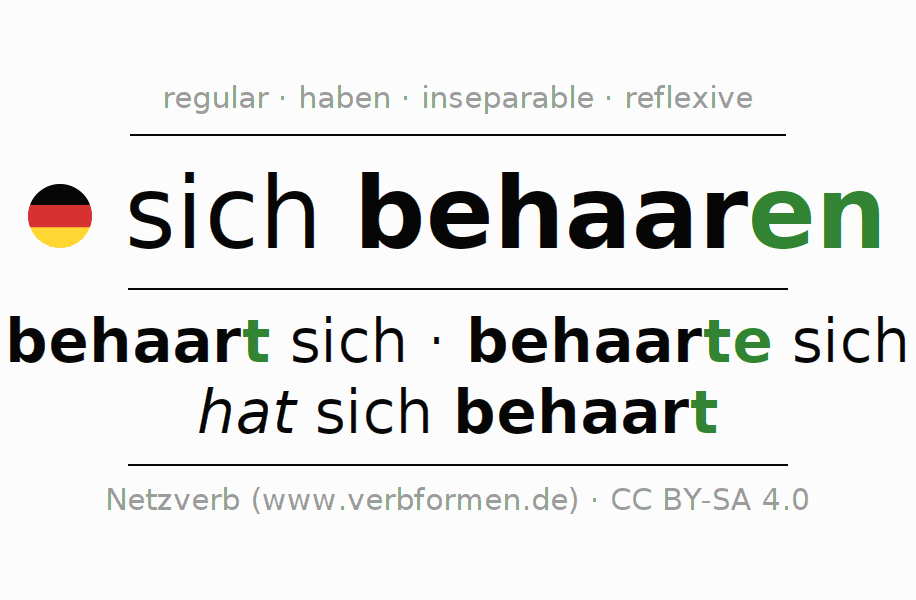 Entire conjugation of the German verb sich behaaren. All tenses are clearly represented in a table.