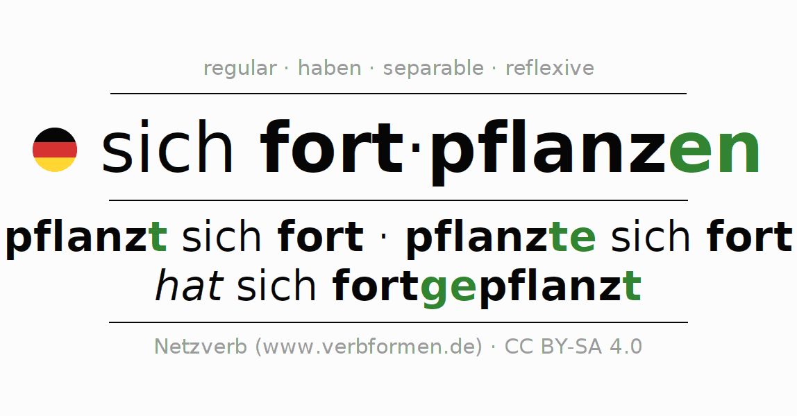 Entire conjugation of the German verb sich fortpflanzen. All tenses are clearly represented in a table.