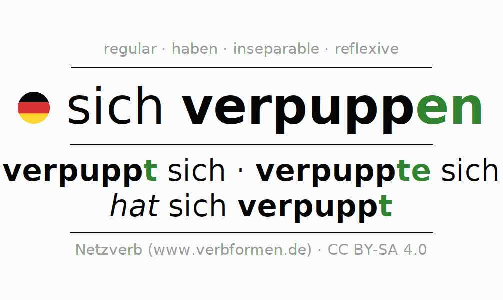 Entire conjugation of the German verb sich verpuppen. All tenses are clearly represented in a table.