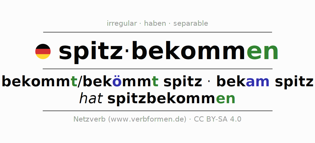 Entire conjugation of the German verb spitzbekommen. All tenses are clearly represented in a table.