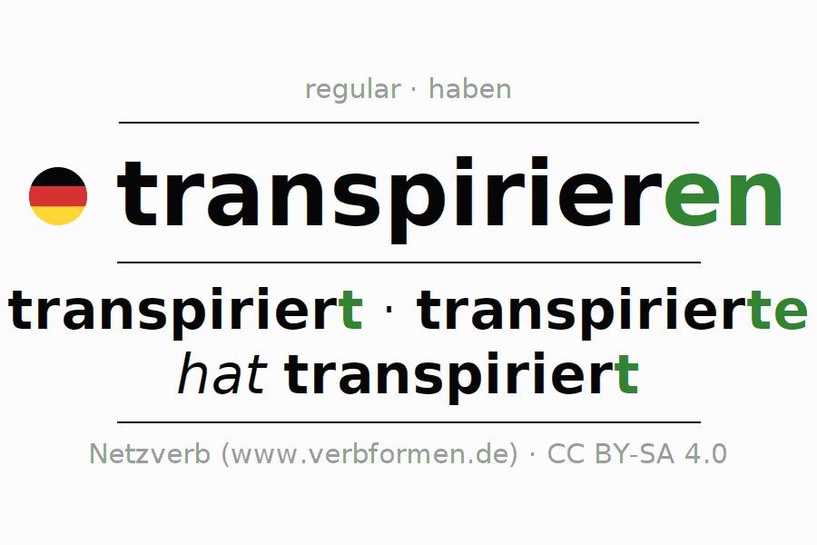 Entire conjugation of the German verb transpirieren. All tenses and modes are clearly represented in a table.