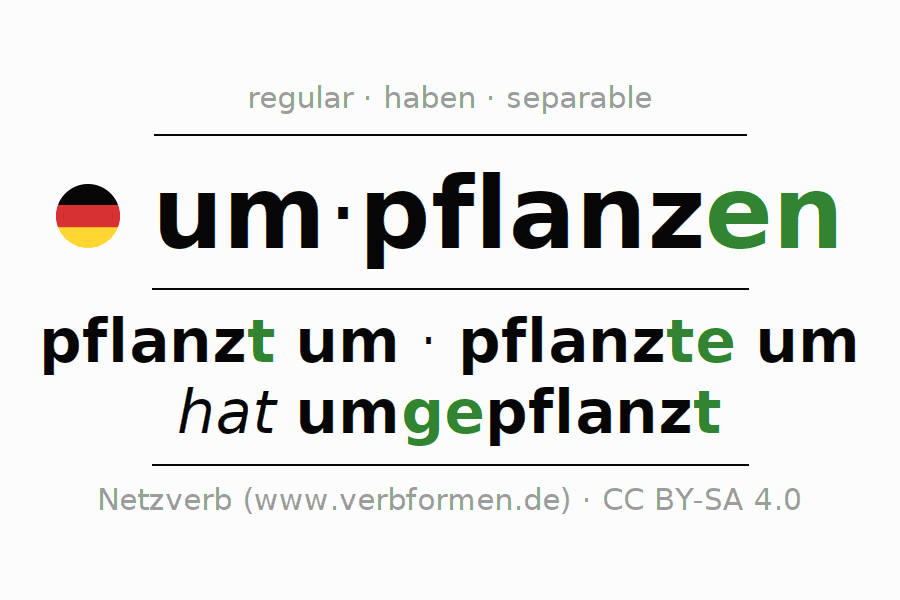 Entire conjugation of the German verb umpflanzen. All tenses and modes are clearly represented in a table.