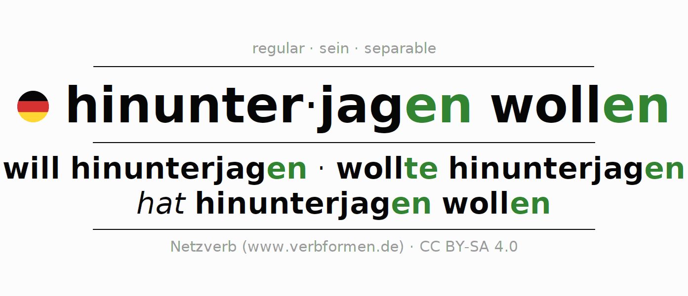 Conjugation of German verb will hinunterjagen (ist)