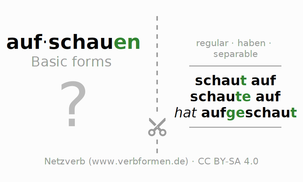 Flash cards for the conjugation of the verb aufschauen