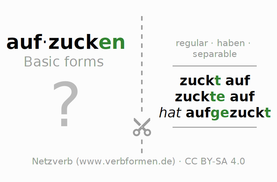 Flash cards for the conjugation of the verb aufzucken (hat)