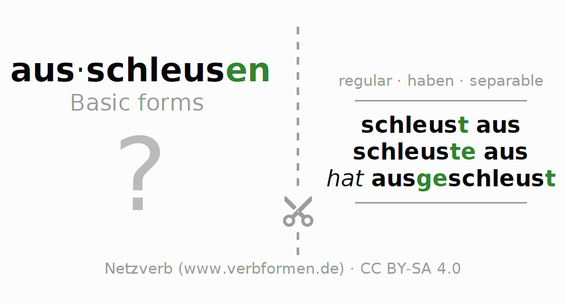 Flash cards for the conjugation of the verb ausschleusen (hat)