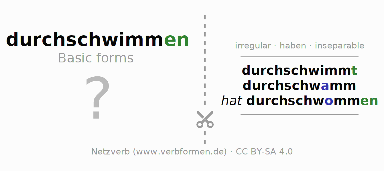 Flash cards for the conjugation of the verb durchschwimmen (hat)