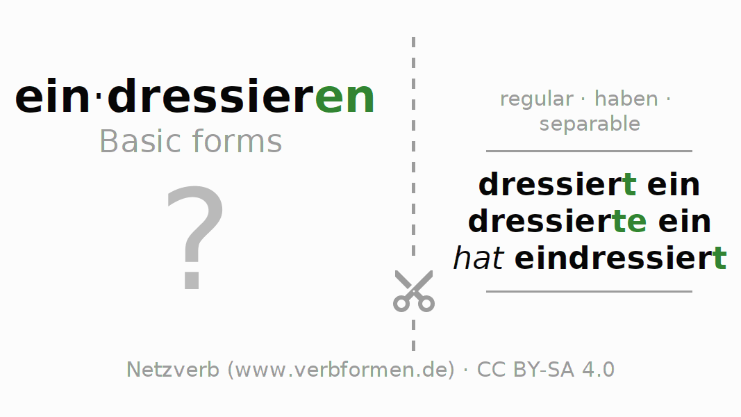 Flash cards for the conjugation of the verb eindressieren