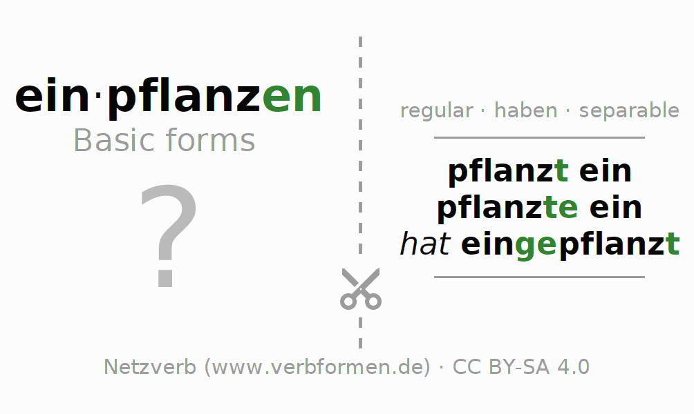 Flash cards for the conjugation of the verb einpflanzen