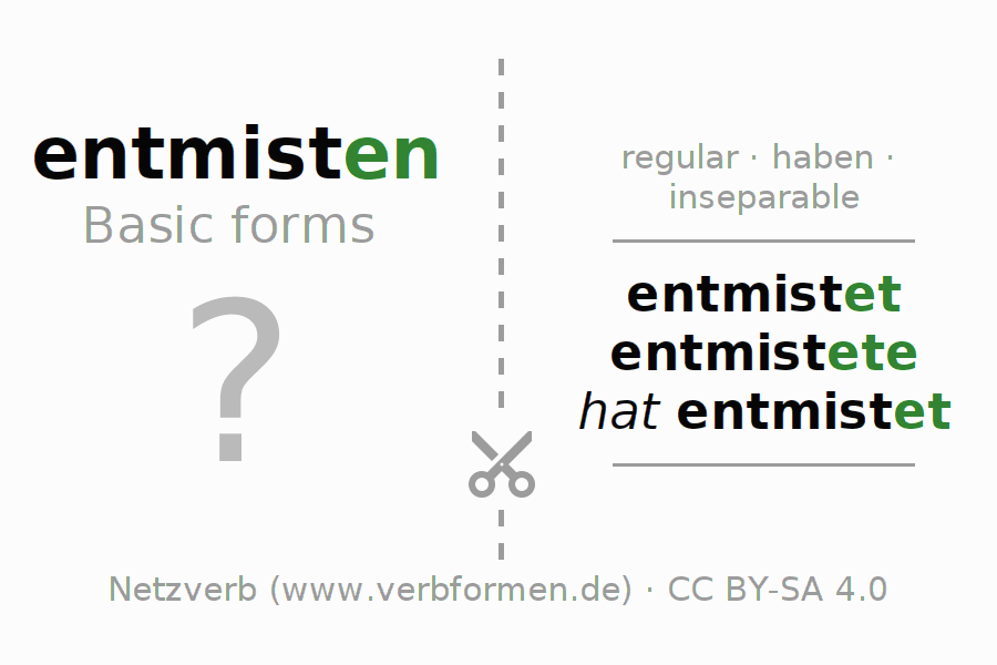 Flash cards for the conjugation of the verb entmisten