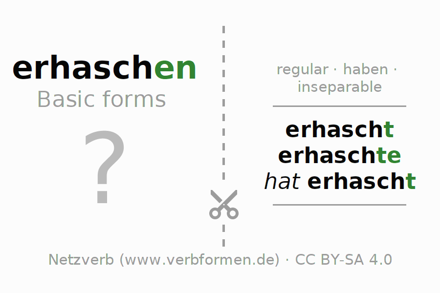 Flash cards for the conjugation of the verb erhaschen