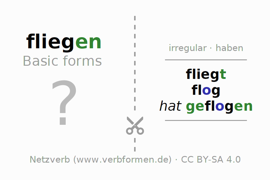 Flash cards for the conjugation of the verb fliegen (hat)