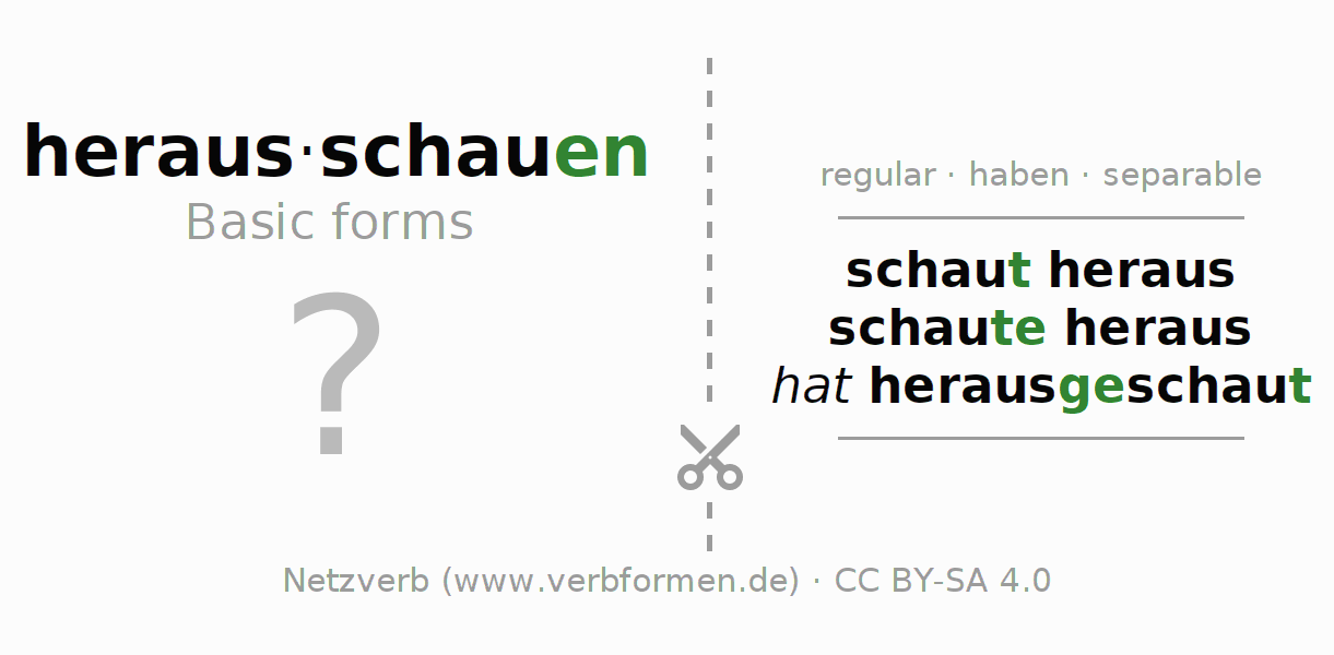 Flash cards for the conjugation of the verb herausschauen