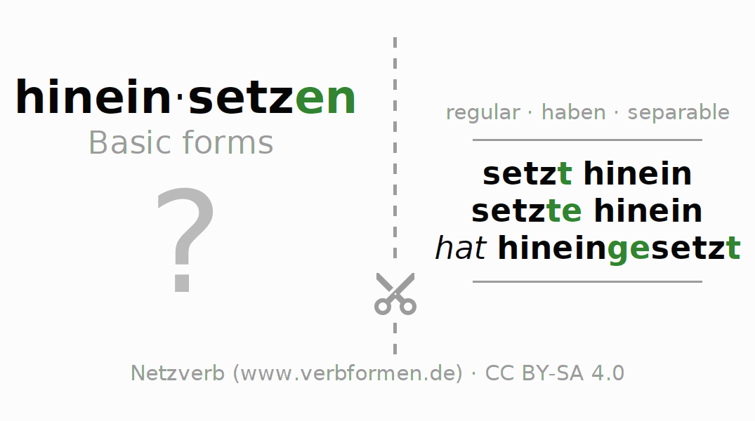 Flash cards for the conjugation of the verb hineinsetzen