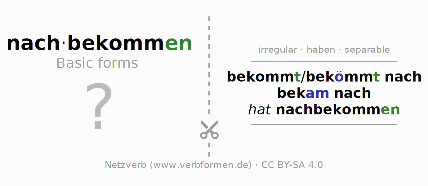 Flash cards for the conjugation of the verb nachbekommen