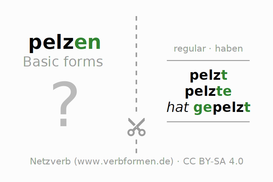 Flash cards for the conjugation of the verb pelzen