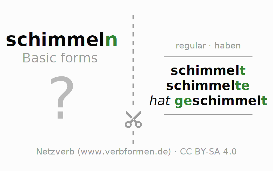 Flash cards for the conjugation of the verb schimmeln (hat)
